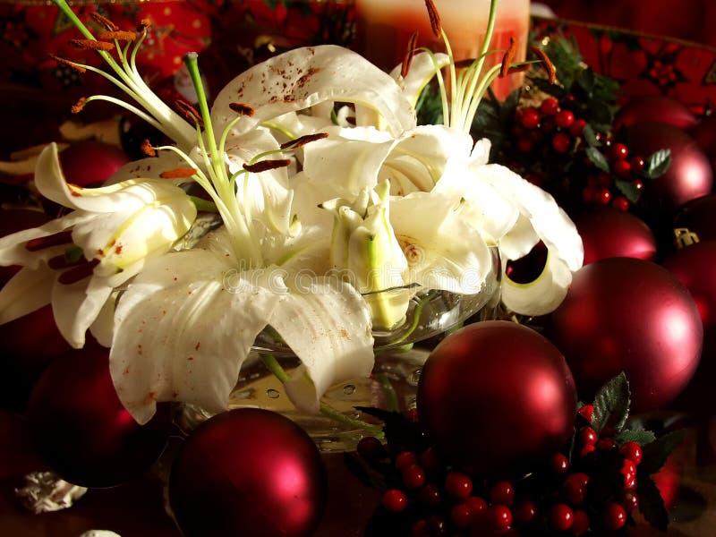 Download La Navidad imagen de archivo. Imagen de verde, plumas - 1279771