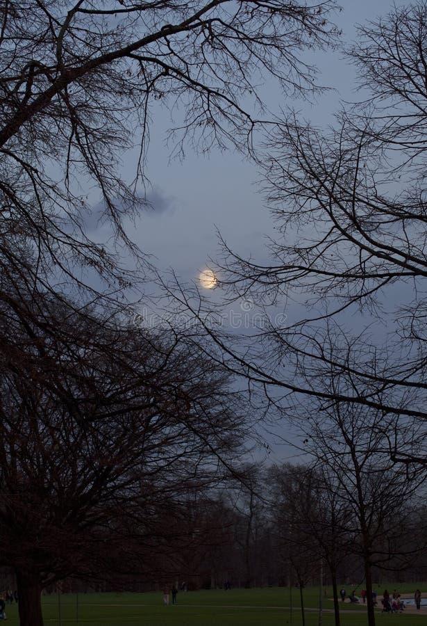 Download La Navidad 2015 De La Luna Llena Imagen de archivo - Imagen de oscuro, luna: 64200267