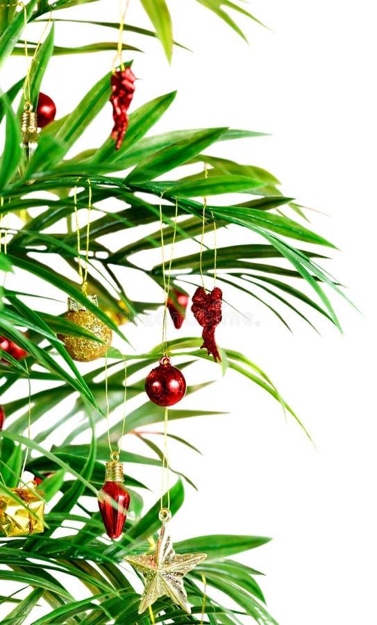 La Navidad de la palmera fotos de archivo