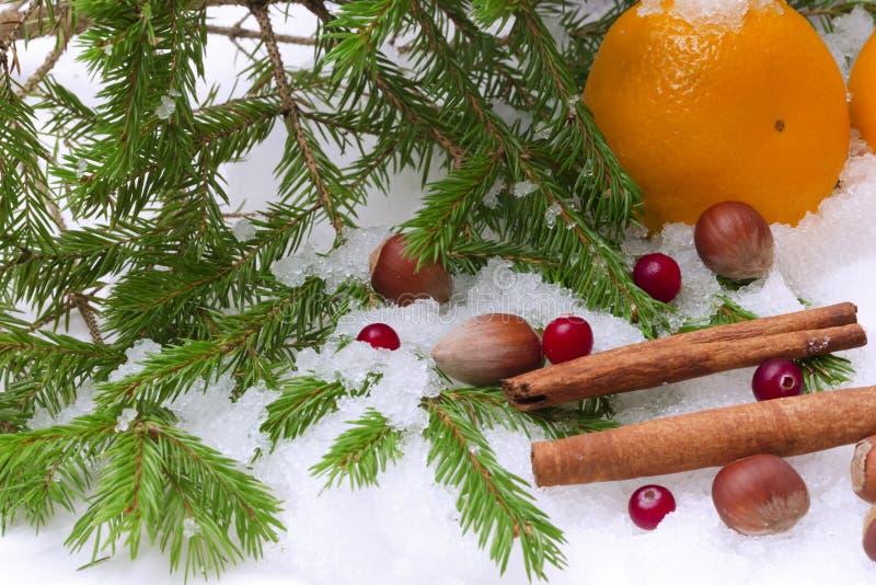 La Navidad de la picea del invierno del canela de la avellana de la nieve de las mandarinas fotografía de archivo libre de regalías