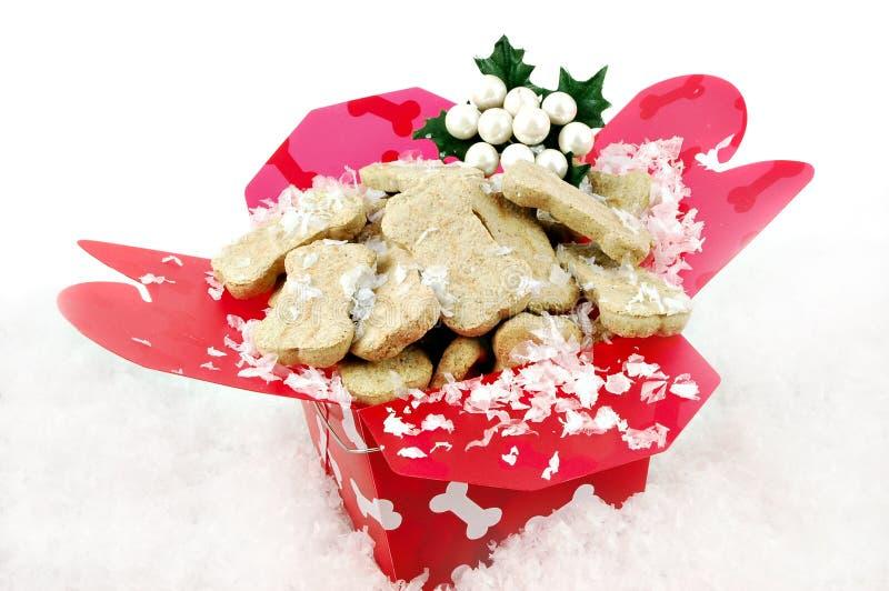 La Navidad del perrito imagen de archivo libre de regalías