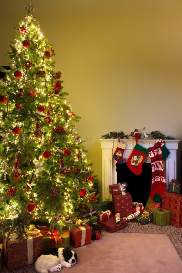 La Navidad en el país fotografía de archivo