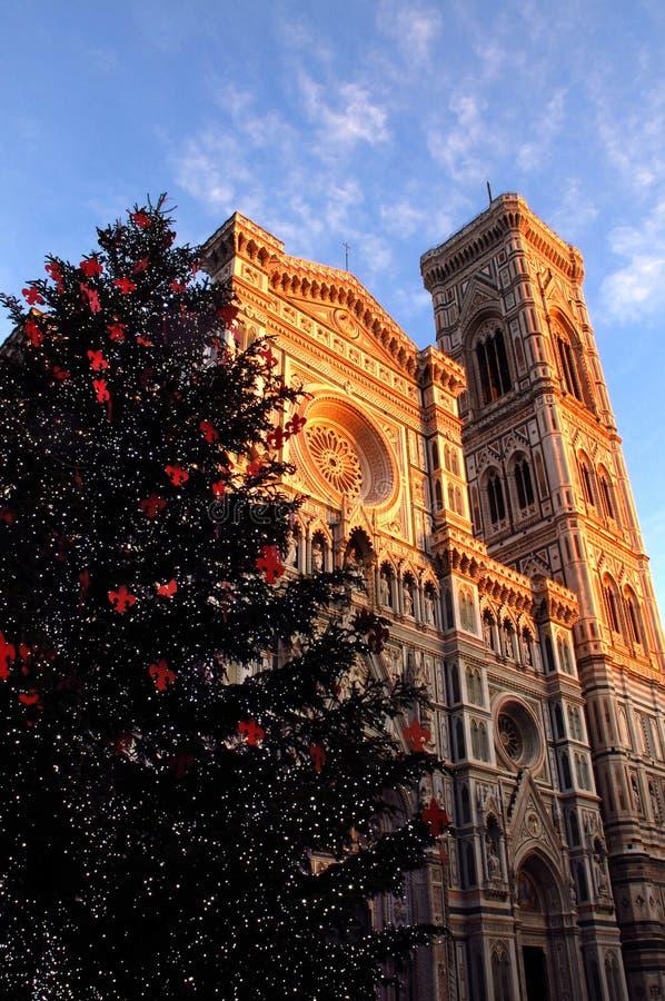 La Navidad en Florencia, árbol de navidad en Piazza del Duomo en Florencia con la catedral y el campanario de Giotto en el backgr foto de archivo