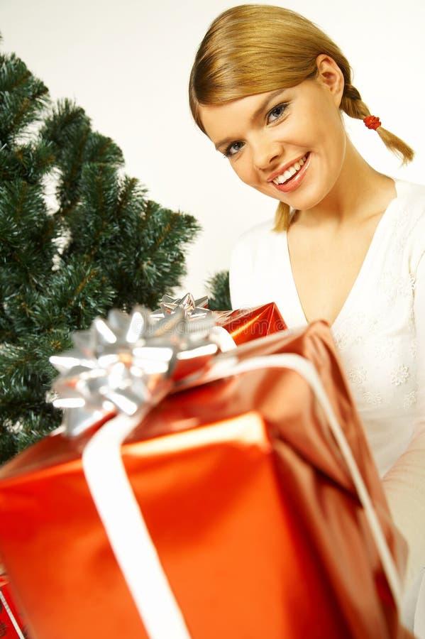 La Navidad Gril fotografía de archivo libre de regalías