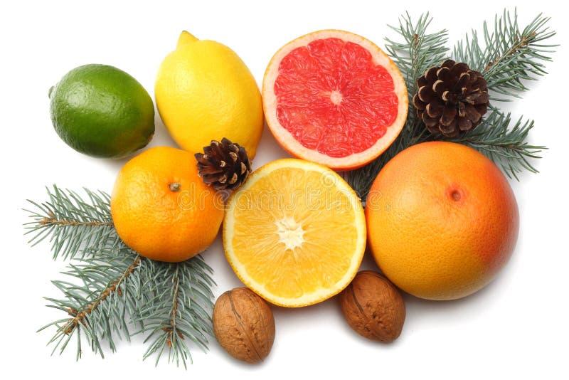La Navidad mezcle el limón cortado, la cal verde, la naranja, el mandarín, la fruta de kiwi y el pomelo con el cono y el árbol de fotos de archivo libres de regalías