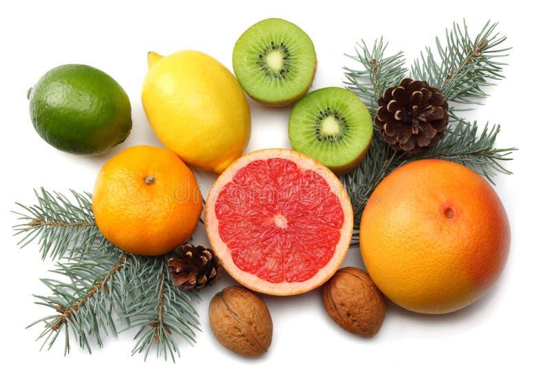 La Navidad mezcle el limón cortado, la cal verde, la naranja, el mandarín, la fruta de kiwi y el pomelo con el cono y el árbol de fotografía de archivo libre de regalías