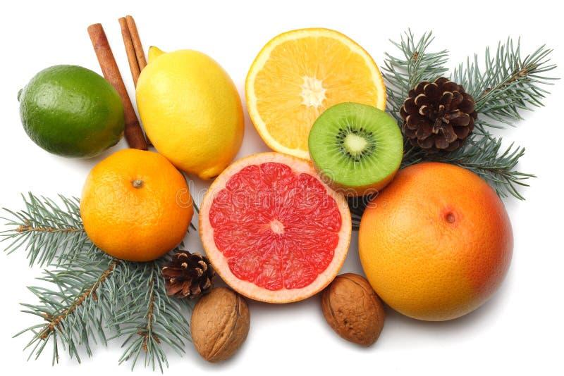 La Navidad mezcle el limón cortado, la cal verde, la naranja, el mandarín, la fruta de kiwi y el pomelo con el cono y el árbol de fotos de archivo