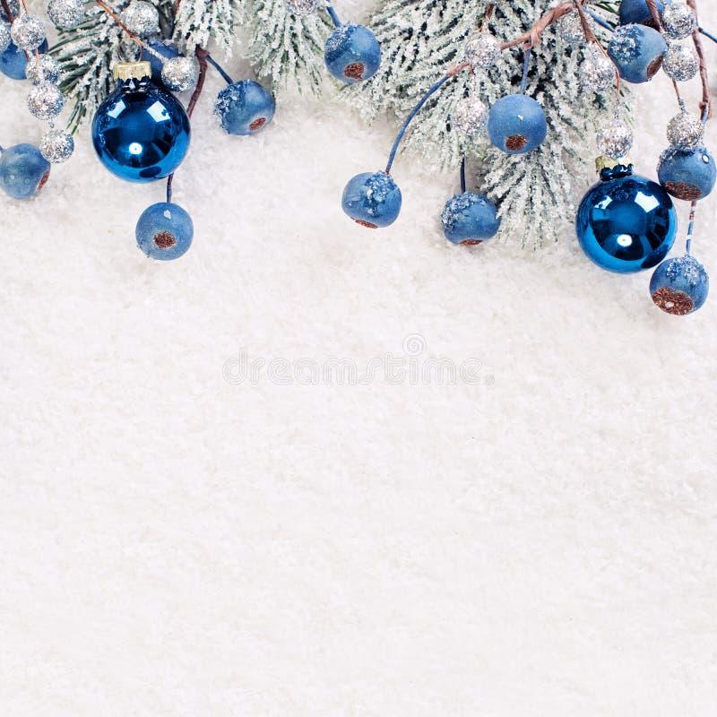 La Navidad o composición del invierno con la ramita verde del árbol de Navidad y las bayas azules en el fondo blanco de la nieve imagen de archivo