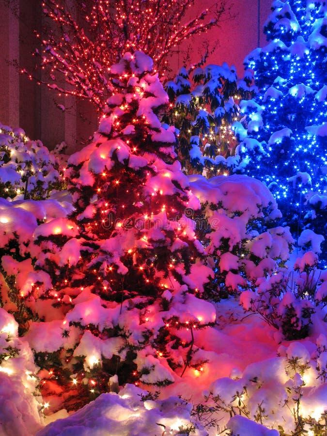 La Navidad roja y azul imagen de archivo