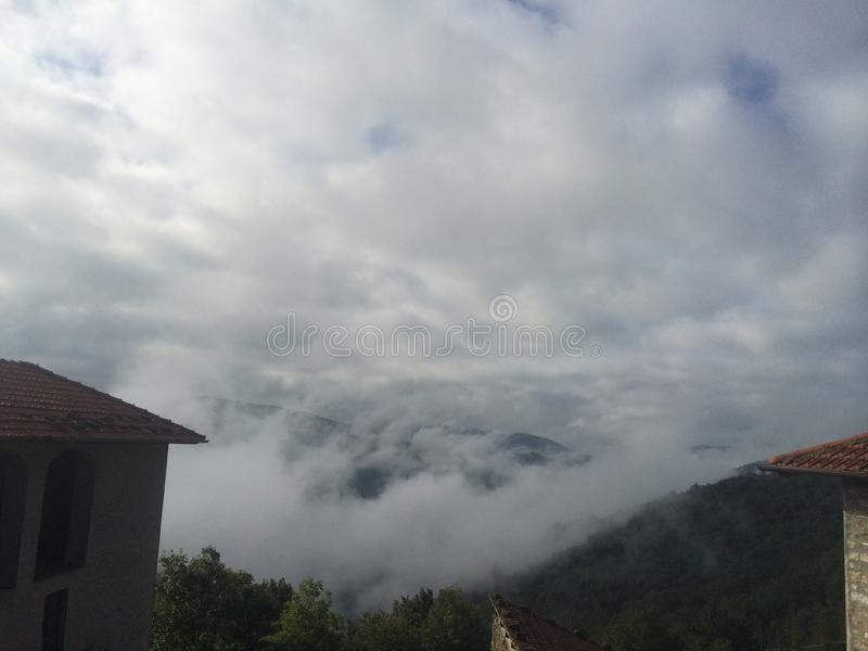 La nebbia della mattina dentro immagine stock libera da diritti