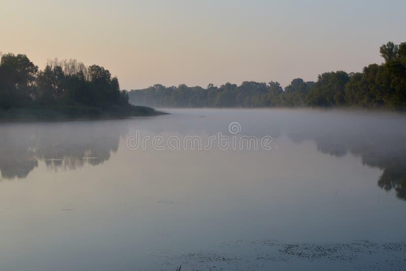 La nebbia sull'acqua, l'alba, i raggi del sole splende sulla superficie regolare dello specchio dell'acqua fotografia stock libera da diritti