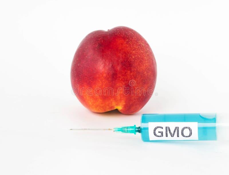 La nectarina en un fondo blanco, es después una jeringuilla con gmo y los nitratos, primer, organismo genético modificado imágenes de archivo libres de regalías