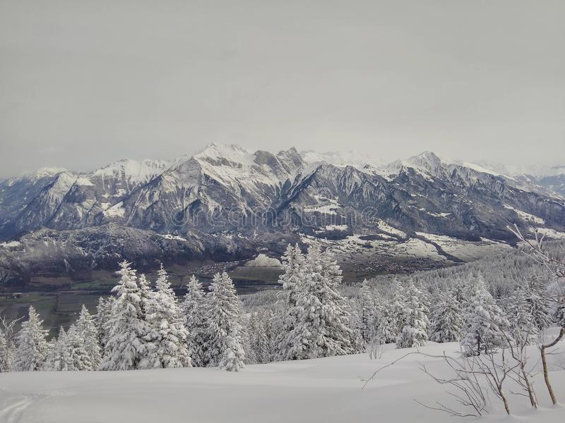La neige a couvert des montagnes et des arbres photos libres de droits