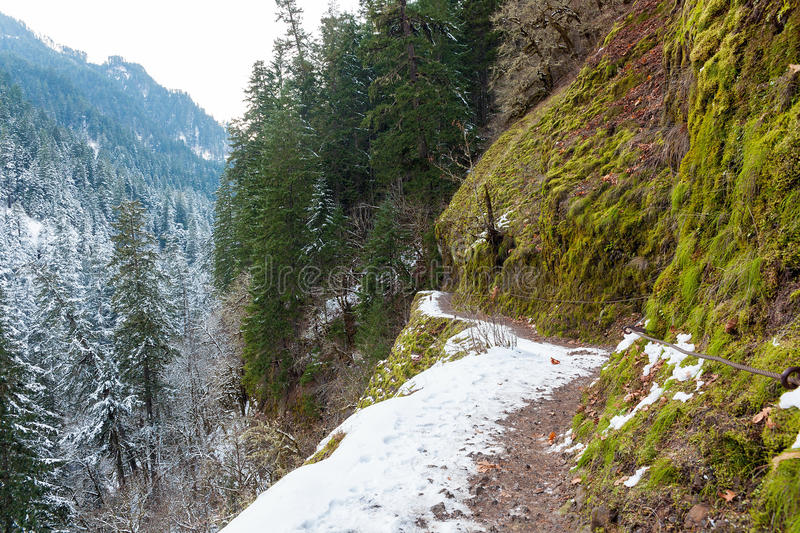 La neige a couvert Forest Narrow Hiking Trail image stock