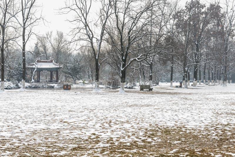 La neige a couvert l'herbe image libre de droits