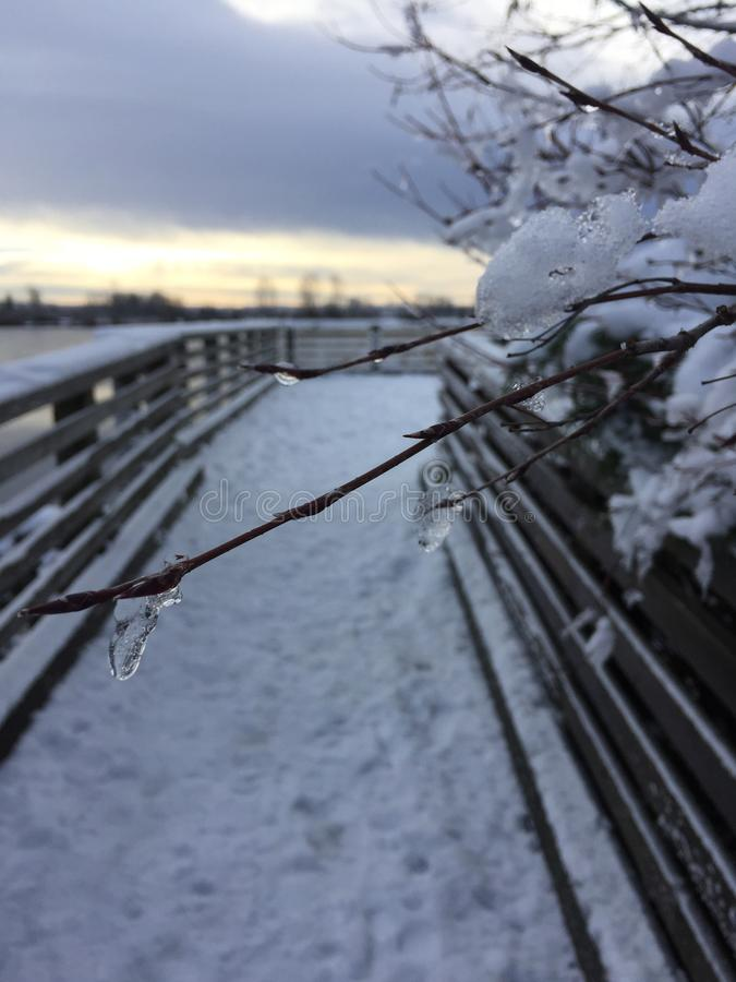 La neige a couvert la promenade, Pitt Meadow le long de Fraser River, Colombie-Britannique, Canada images stock