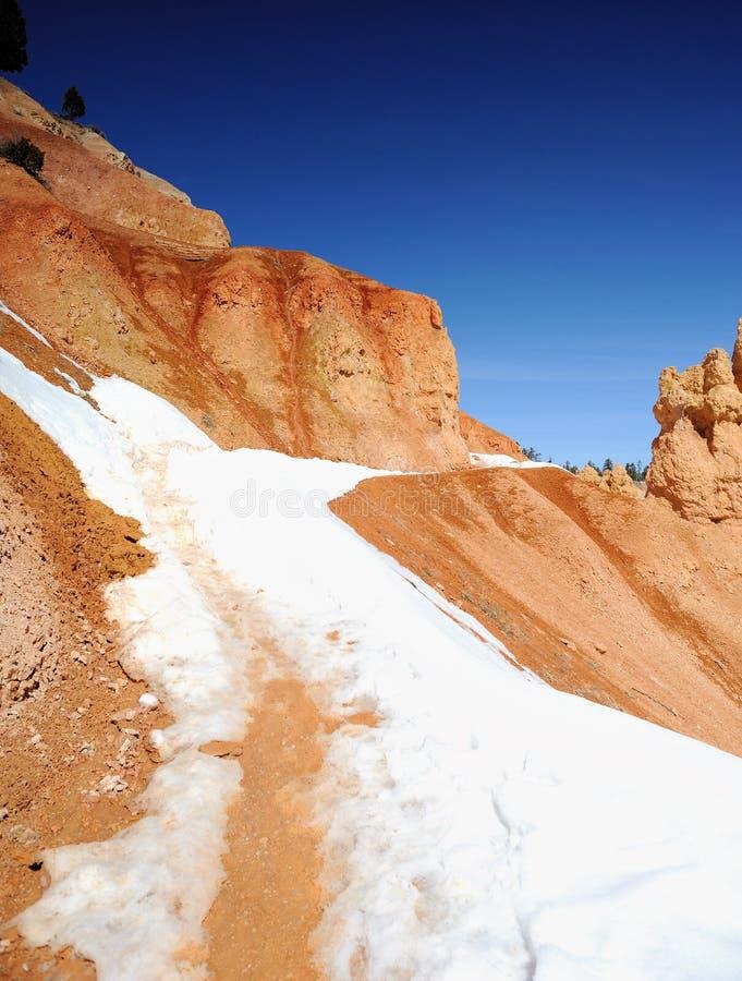La neige a couvert le journal de hausse - la gorge NP de Bryce photographie stock