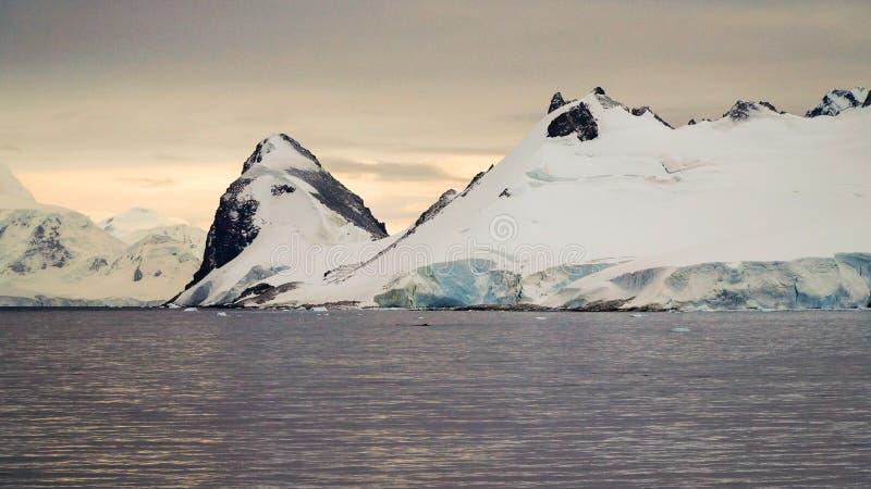 La neige a couvert le paysage de montagne en Antarctique autour de l'île de Cuverville photo libre de droits