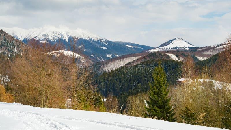 La neige a couvert le paysage, vue de station de vacances de Donovaly photographie stock