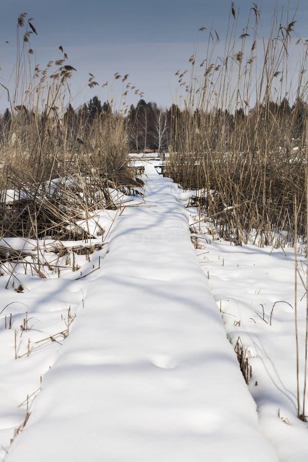 La neige a couvert le pilier près d'un lac, hiver dans Diosjeno image stock