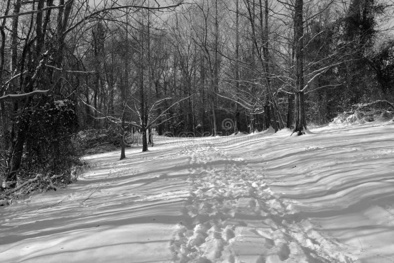 La neige a couvert le sentier de randonnée photo libre de droits
