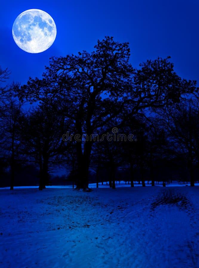 La neige a couvert le stationnement à minuit de pleine lune image libre de droits