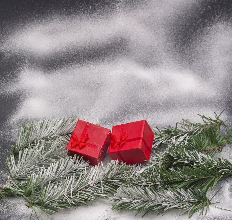 La neige a couvert les branches de sapin et le boîte-cadeau rouge photos stock