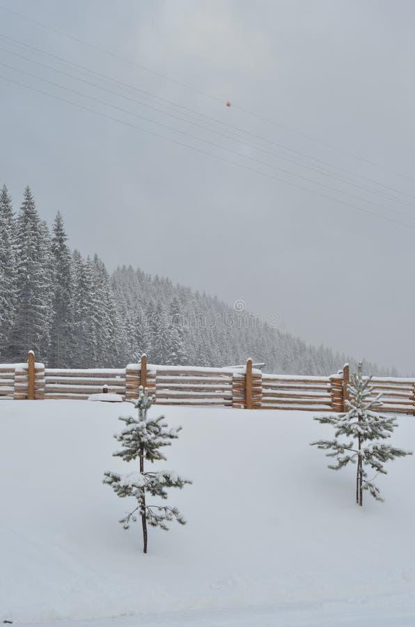 La neige a couvert les montagnes, fond d'hiver avec l'espace de copie photo libre de droits