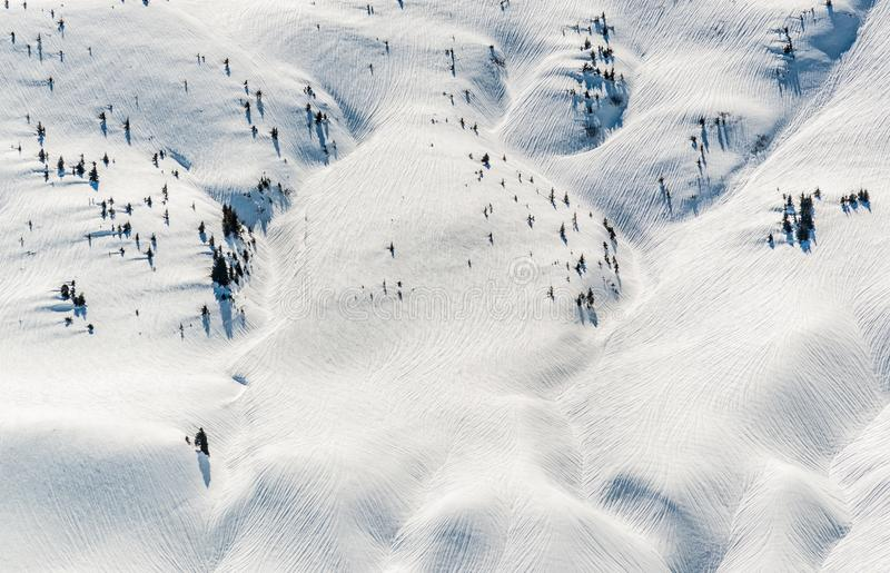 La neige a couvert la montagne vierge d'arbres dispersés image stock