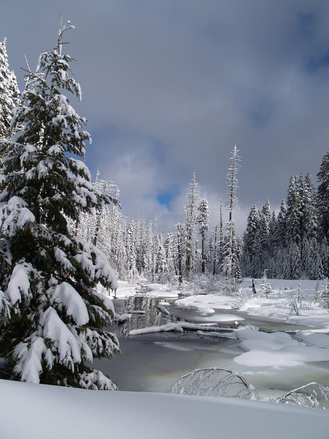 La neige a couvert peu de crique de butte images libres de droits