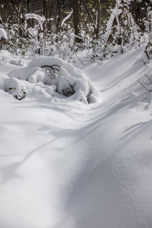 La neige a couvert la traînée de montagne, Hudson Valley, New York images stock