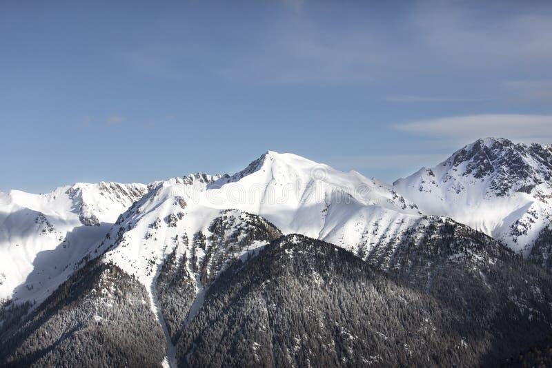 La neige de observation de femme a couvert des montagnes Alpes, paysage d'hiver Station de sports d'hiver Bellamonte, Lusia, Valb image libre de droits