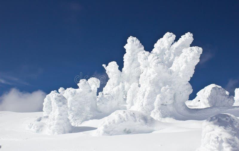 La Neige A Englouti Des Arbres Contre Le Ciel Bleu Photographie stock