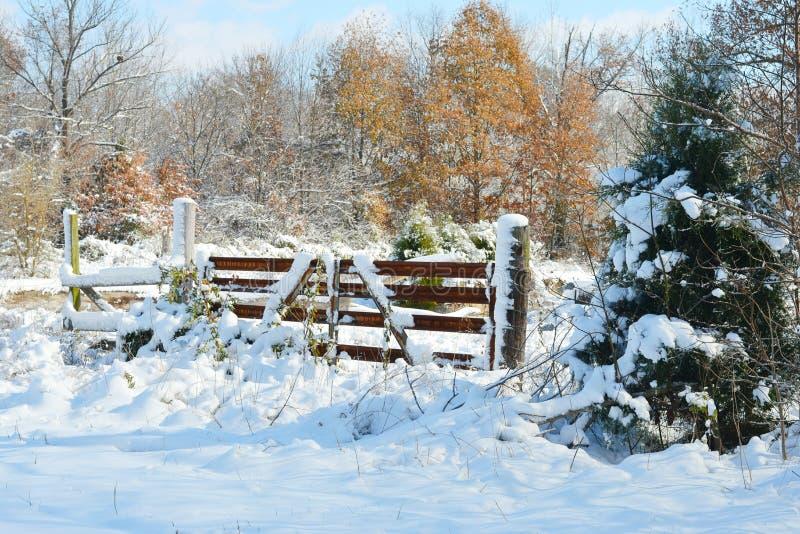 La neige givrée rurale a couvert la porte photographie stock