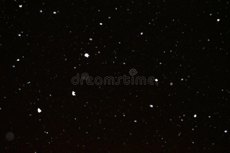 La neige tombant pendant la tempête de neige d'hiver en Alabama occidental photographie stock libre de droits