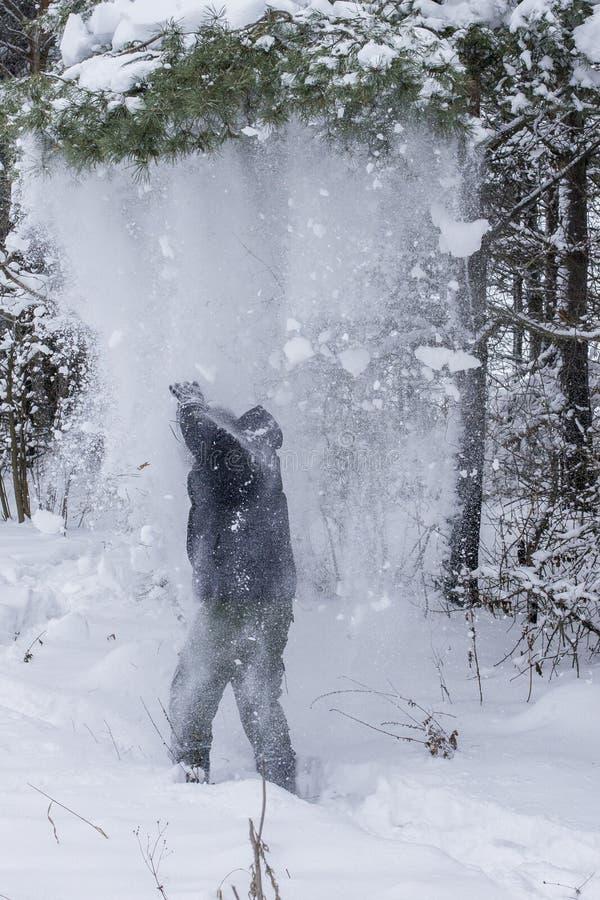 La neige tombe sur un homme d'un arbre photo stock