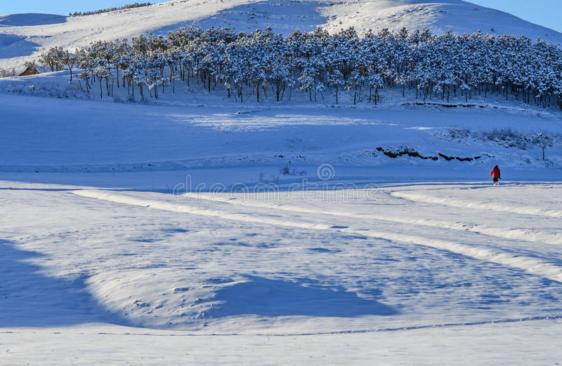 La neve fotografia stock