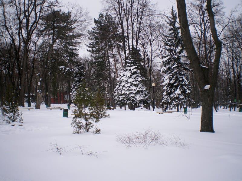 La neve in città fotografia stock