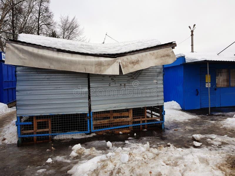 La neve ha rotto il tetto di un deposito o di una stalla nell'inverno o nella primavera fotografie stock