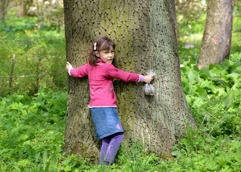 La niña abraza un tronco de un árbol grande foto de archivo libre de regalías