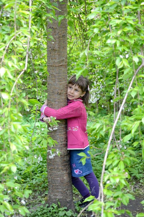 La niña abraza un tronco de un cerezo imagenes de archivo