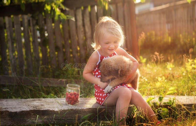 La niña en el campo abraza un pequeño perrito mullido cerca una poder recogida de frambuesas en registros La atmósfera del verano foto de archivo
