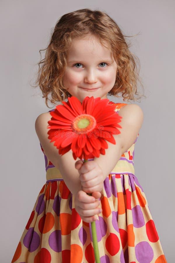 La niña feliz da una flor alguien fotografía de archivo libre de regalías
