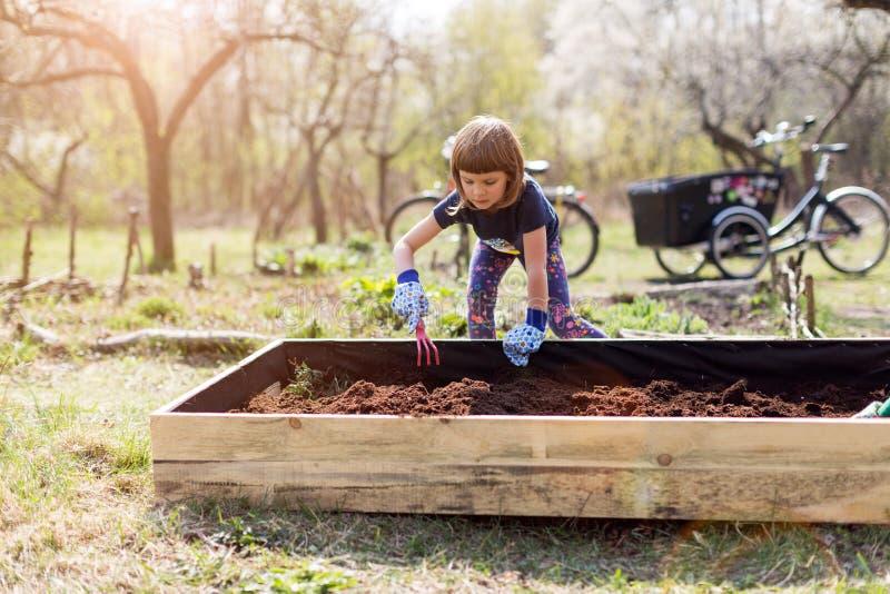 La niña linda goza el cultivar un huerto foto de archivo