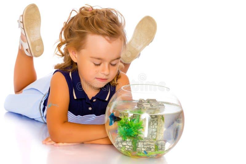 La niña mira el pescado que flota en el acuario fotografía de archivo