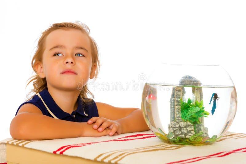 La niña mira el pescado que flota en el acuario fotos de archivo