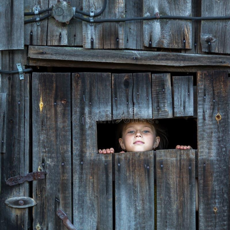 La niña mira fuera de la vertiente a través de una pequeña ventana Verano fotos de archivo