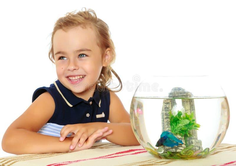 La niña mira los pescados que nadan en el acuario imagenes de archivo
