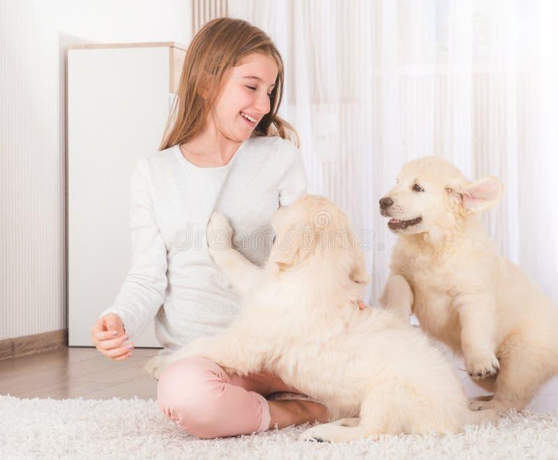 La ni?a se sienta abrazando perritos del perro perdiguero imagen de archivo