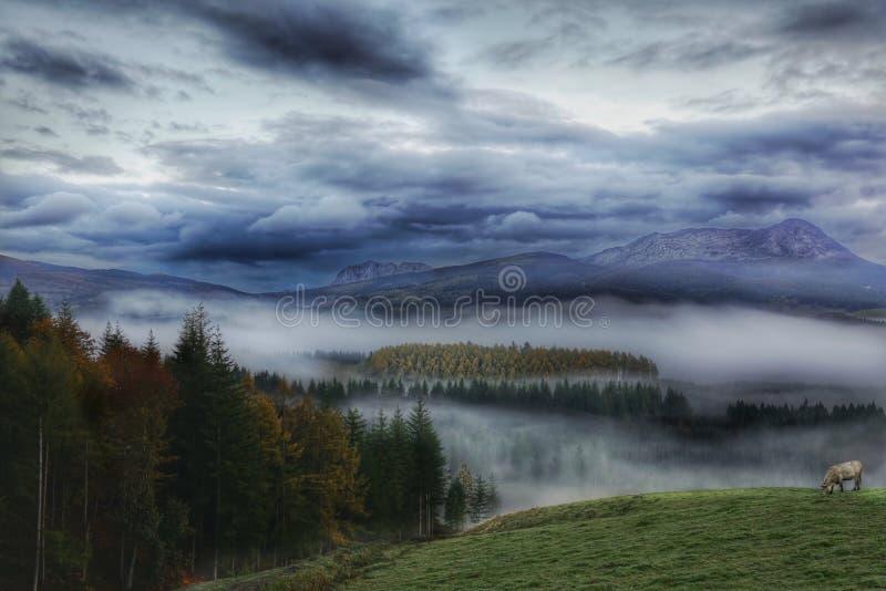 La niebla cubrió el valle y las montañas foto de archivo